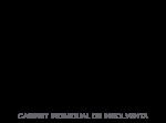Insolventatm Logo